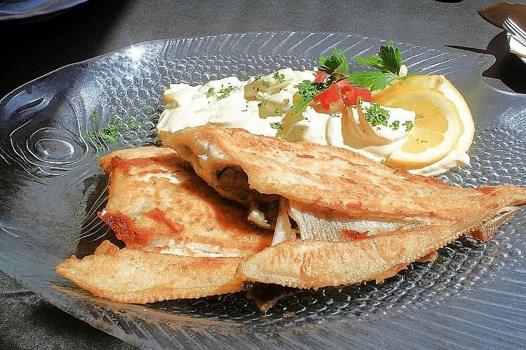 Fisch des Monats - Maischolle