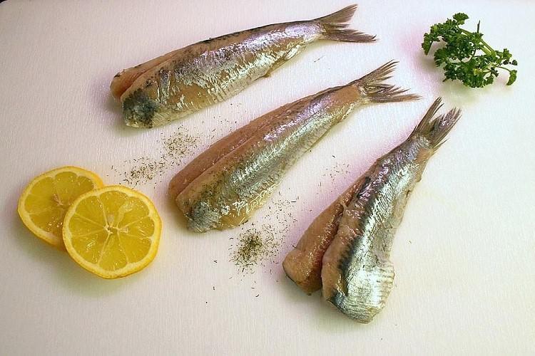 Fisch des Monats - Matjes